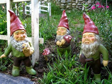 Gnomes1a