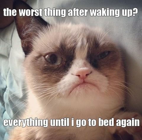 Waking-Up-Meme